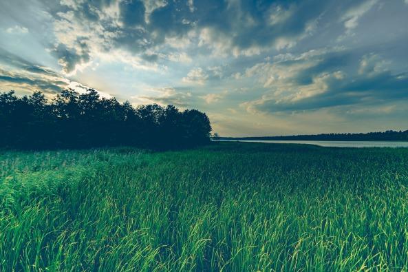 lake-1611044_1920
