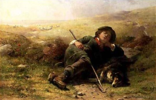 sleeping shepherd